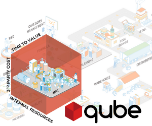 Qube: Accelerating ERP Implementations Through ClearPrism's Signature Methodology