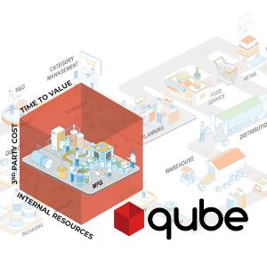 Qube: Accelerating ERP Implementations Through ClearPrism's Signature Methodology